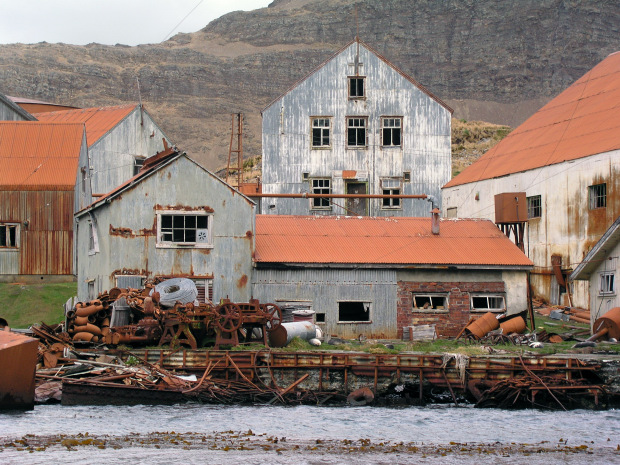 Cruise To The Whalers Ghost Town Of Grytviken And